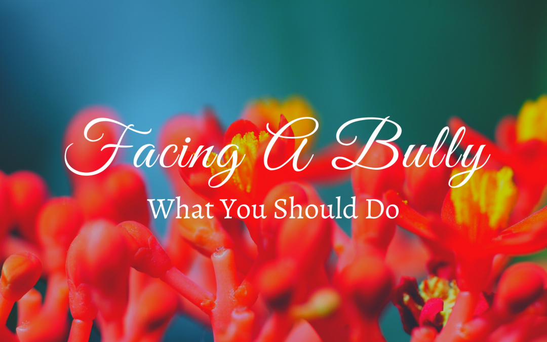 Facing A Bully: What You Should Do